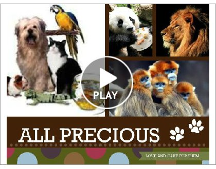 precious pets and animals